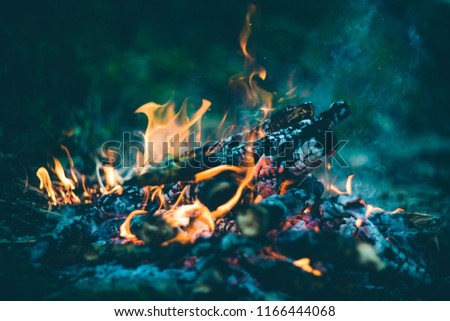 A fire with wet wood in the forest #1166444068
