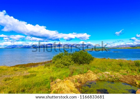 Beautiful isolated Iceland beach with blue skies and puffy clouds. Moss covered hills and mountains in background. Wild flowers on beach. #1166833681