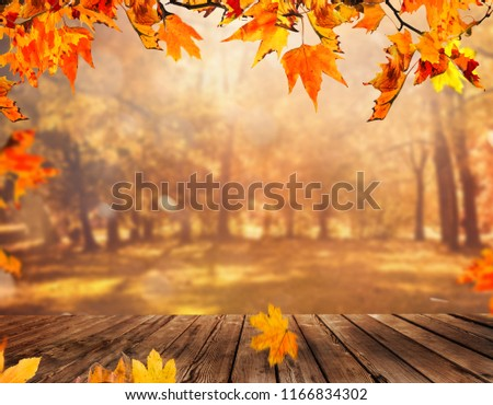 Wooden table with orange leaves autumn background #1166834302