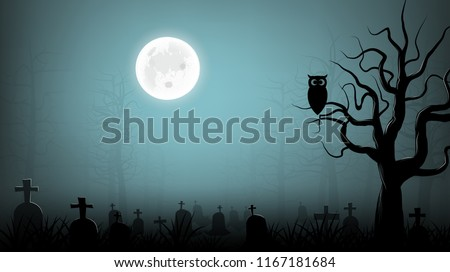 scary cemetery with owl on die tree  background #1167181684