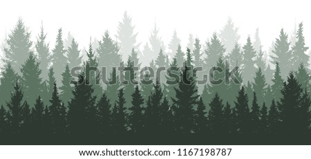 Forest background, nature, landscape. Evergreen coniferous trees. Pine, spruce, christmas tree. Silhouette vector Royalty-Free Stock Photo #1167198787