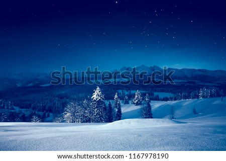Snowy winter night. Stunning night landscape. Sky with stars over snowy mountains and valley. Royalty-Free Stock Photo #1167978190
