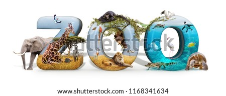 Zoo word in 3D with African nature wildlife animals and aquarium conceptual scene  Royalty-Free Stock Photo #1168341634