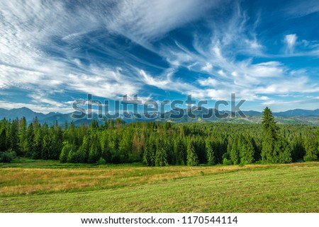 Landscape, Tatra Mountains, Poland #1170544114