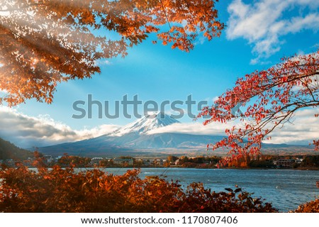 Colorful Autumn in Mount Fuji, Japan - Lake Kawaguchiko is one of the best places in Japan to enjoy Mount Fuji scenery of maple leaves changing color giving image of those leaves framing Mount Fuji. #1170807406