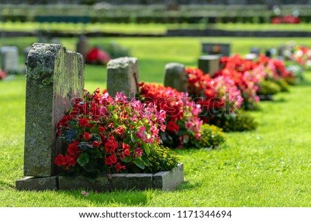 Sun shining on a row of gravestones with red and pink flowers on a beautiful and well cared cemetery Royalty-Free Stock Photo #1171344694