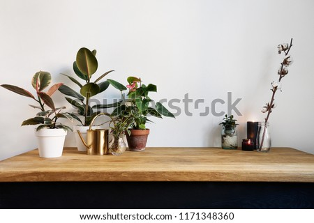 White kitchen interior with green plants on rustic wooden table, modern workplace in nordic style #1171348360