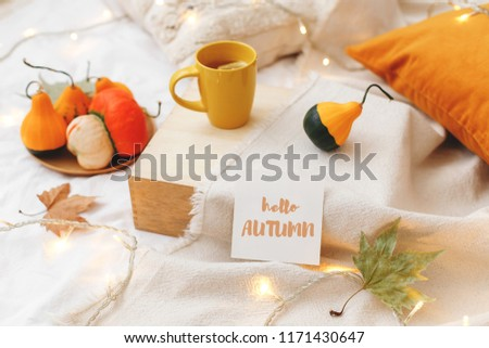 Orange pumpkins, wooden tray, cup of tea, dry leaves, beige plaid, pillows, glowing garland lights and card with text HELLO AUTUMN on bed with white linen. Home cozy fall decor. #1171430647