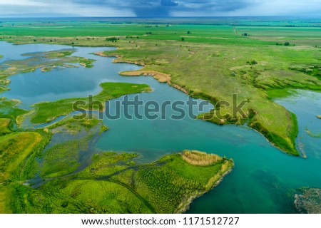 aerial top view of forest mountain in asian Kazakhstan #1171512727