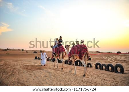 Camel Trek at Desert Safari Dubai. #1171956724