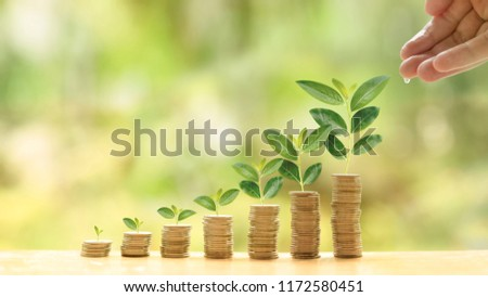 Concept of investment like a growing plant. A hand of investor give water for investing fund. It is collect coin and golden bokeh background. It is wallpaper or backdrop for investment and cumulative #1172580451