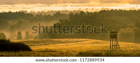 hunting tower in the valley in the morning mists Royalty-Free Stock Photo #1172889934