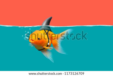 Goldfish with shark fin swim in green water and red sky, Gold fish with shark flip . Mixed media #1173126709