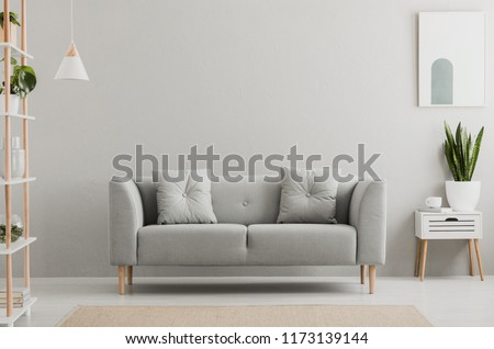 Poster above white cabinet with plant next to grey sofa in simple living room interior. Real photo #1173139144