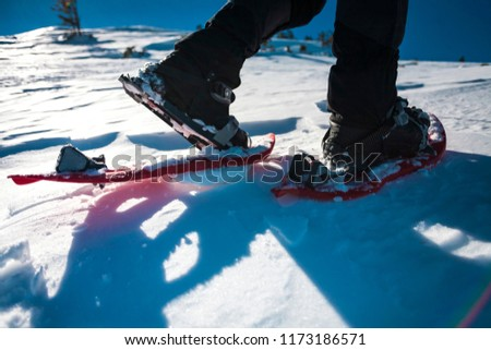 Man in snowshoes with trekking poles. Equipment for walking on snow close up. Journey through the mountains in winter. Shoes for travel. Men's legs. #1173186571
