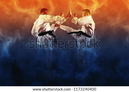 Martial arts masters, karate practice. Two male karate fighting  #1173240400