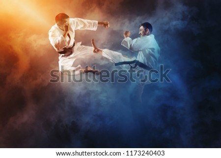 Martial arts masters, karate practice. Two male karate fighting  #1173240403