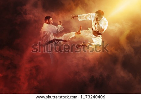 Martial arts masters, karate practice. Two male karate fighting  #1173240406