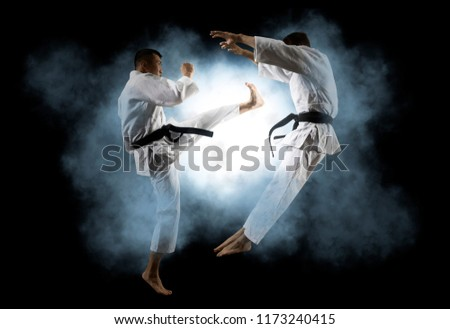 Martial arts masters, karate practice. Two male karate fighting  #1173240415