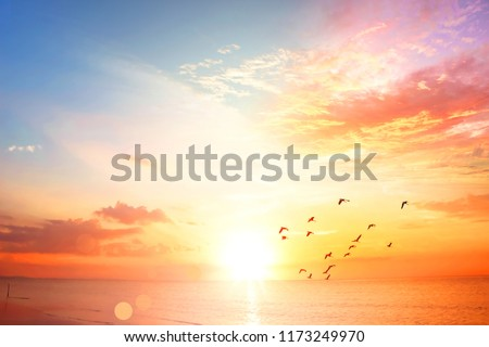 World Environment Day concept:Sunset / sunrise with clouds Royalty-Free Stock Photo #1173249970