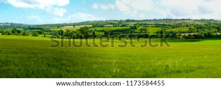 Scenic panoramic view of rolling countryside green farm fields with sheep, cow  and green grass in New Grange, County Meath #1173584455