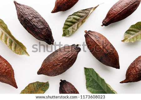 Cocoa pods with cocoa leaves on a white background, creative flat lay food concept #1173608023