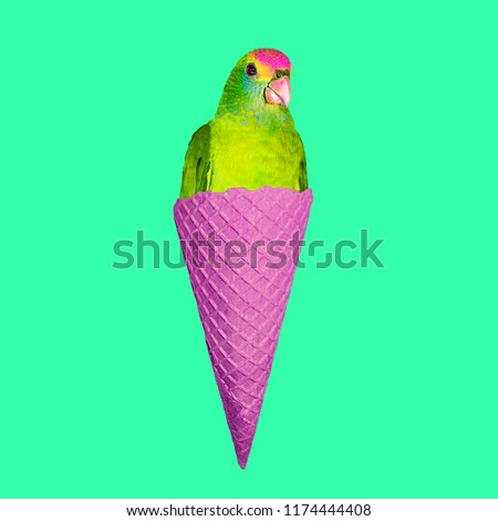 Contemporary art collage. Parrot Ice cream. Funny Fast food minimal project #1174444408