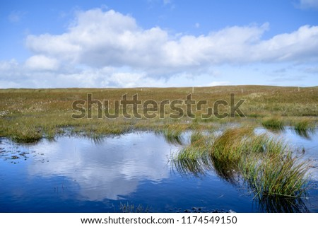 Reflections in a small pond, Nolsoy, Faroe Islands #1174549150