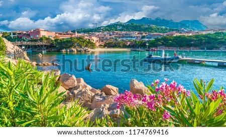 View of harbor and village Porto Cervo, Olbia Tempio region, Sardinia island, Italy #1174769416