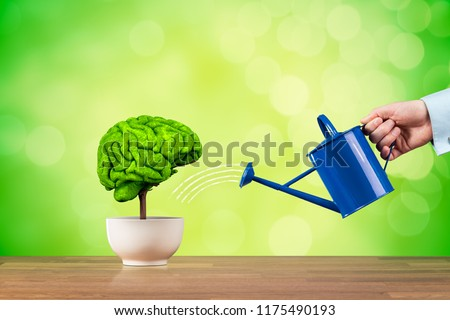 Creativity growth, better using brain function and memory improvement concept. Creativity growth represented by tree looks like the human brain watered by businessman. #1175490193