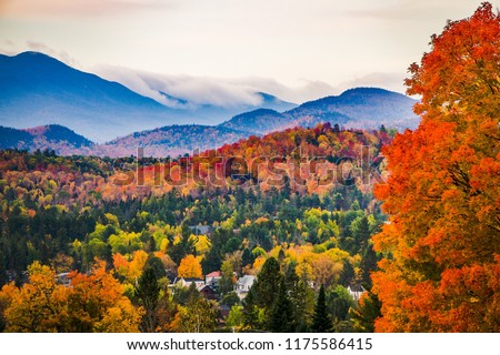 Peak fall color on a foggy morning in New England #1175586415