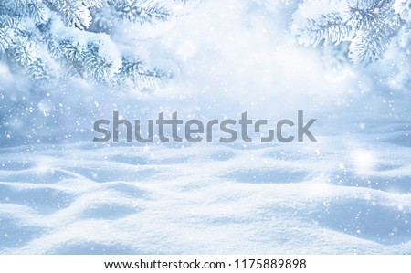 Winter Christmas scenic background with copy space. Snow landscape with spruce branches covered with snow close-up, snowdrifts and falling snow on nature outdoors, copy space, toned blue.