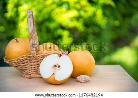 Snow pear or Fengsui pear on the brown wooden table in garden,Fresh Korea pear fruit. Korea pear fresh fruit in the basket  on natural farm background #1176482194