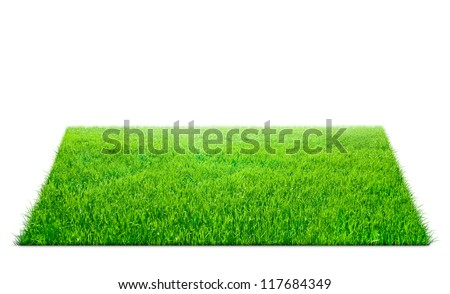 Square of green grass field over white background Royalty-Free Stock Photo #117684349
