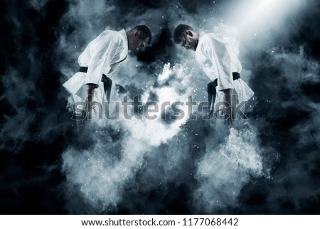 Martial arts masters, karate practice. Two male karate fighting  Royalty-Free Stock Photo #1177068442