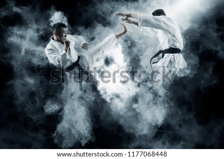 Martial arts masters, karate practice. Two male karate fighting  Royalty-Free Stock Photo #1177068448