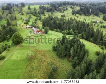 aerial veiw village in  alpine forest. drone shot #1177083463