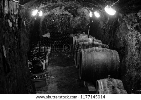 Barrels in Hungarian traditional cellars. Sweet white wine tasting of Tokaji. Black and white picture.