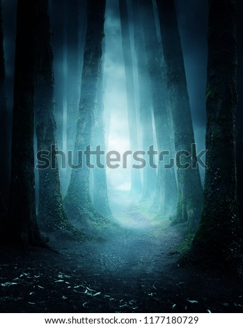 A dark and moody forest at night with a pathway leading through it. Photo composite. #1177180729