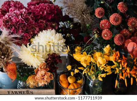 Beautiful autumn seasonal flowers at the florist shop: Dahlia, hydrangea, oriental peppers, pumpkins in orange and burgundy on the grey wall background  #1177711939