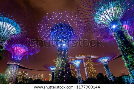 Singapore,Singapore- February 28, 2018:Illuminated Supertrees in Gardens by the Bay at night, Singapore #1177900144