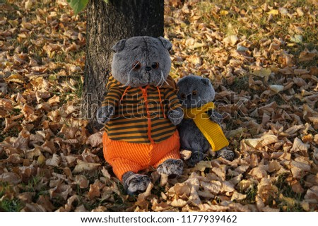 Two plush cats in autumn leaves #1177939462