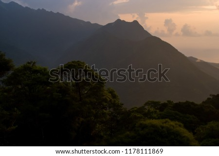 Primitive Landscapes in Yakushima Island #1178111869