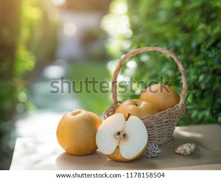Snow pear or Fengsui pear on the brown wooden table in garden,Fresh Korea pear fruit. Korea pear fresh fruit in the basket  on natural farm background #1178158504