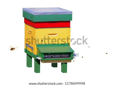 Colorful hive surrounded by bees, isolated on white background.