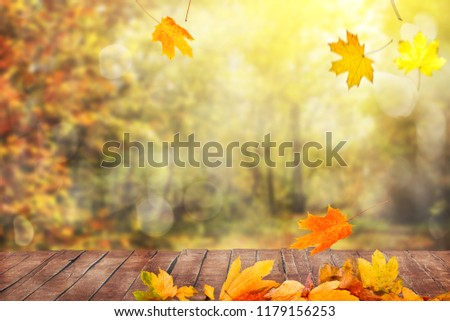 autumn leaves and wooden table #1179156253