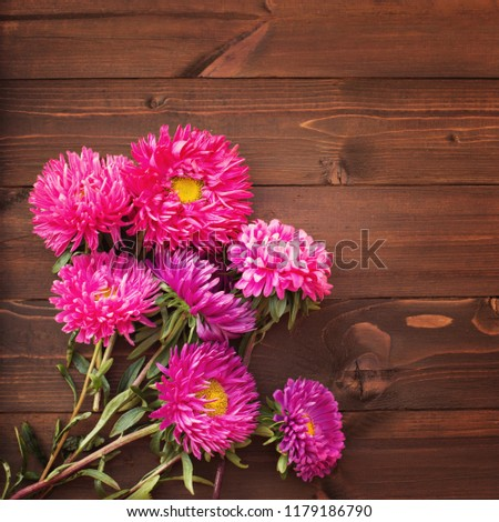 aster bouquet autumn bright fresh rustic colorful in a glass vase on a wooden background #1179186790