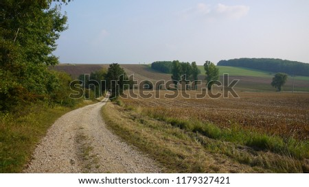 Beautiful landscape of agriculture fields and a sand path in the countryside of Germany #1179327421
