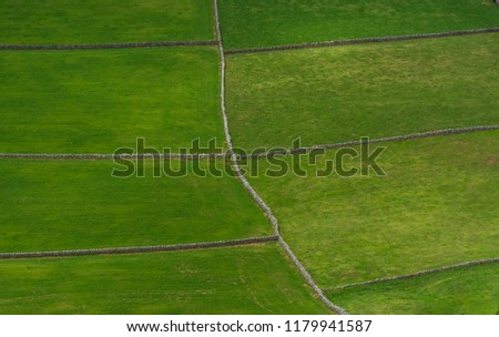 Green field in the Azores #1179941587