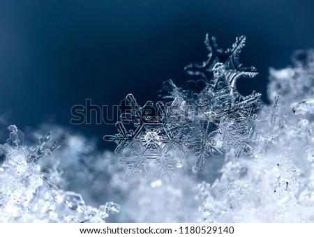 snowflake, little snowflake on the snow #1180529140